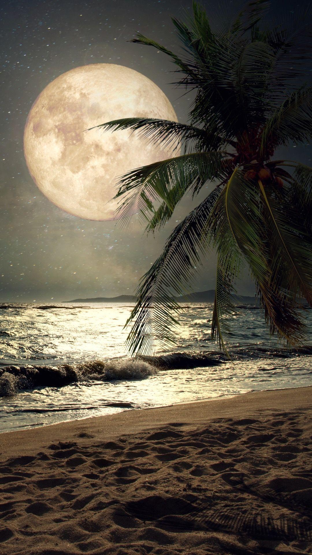 Moonlight Beach Iphone Wallpapers