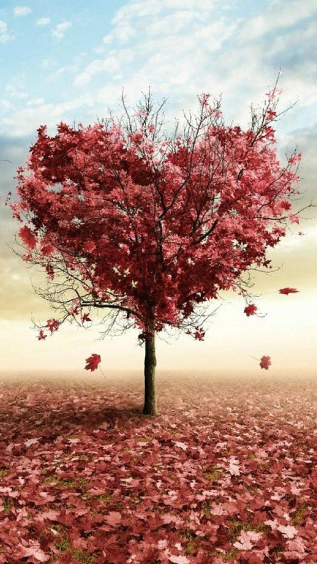 Heart Tree Iphone Wallpaper