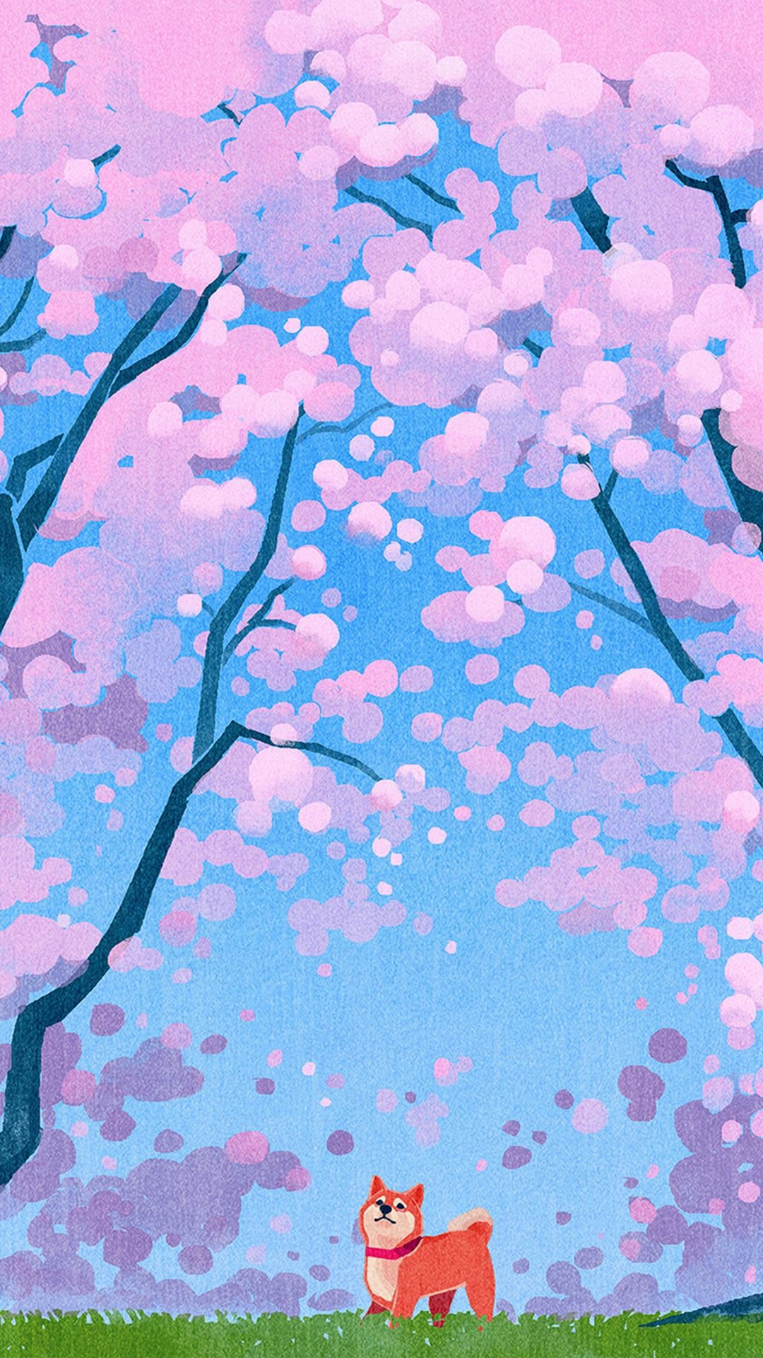 Cherry Blossoms And Shiba Inu Iphone Wallpaper