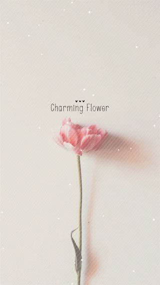 pure charming flower simple pattern iphone 8 wallpaper ilikewallpaper com aa6daffa821d89c3939262db2d19dd2f s